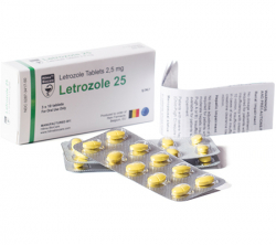 Letrozole 2.5 mg (1 pack)